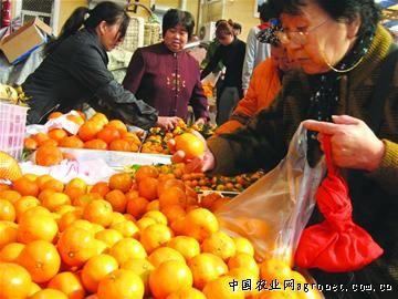 昨天记者从青岛市果品批发市场了解到,每天120吨的水果中只有50多吨为