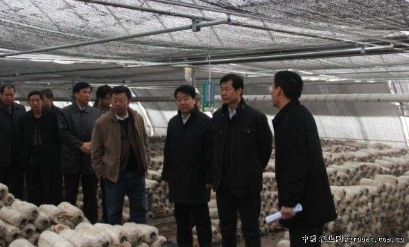 天津市津南区:召开设施农业推动