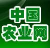 中国农业网