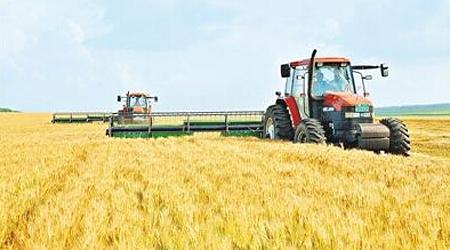 黑龙江垦区秋收大幕拉开 粮食总产将达435亿斤