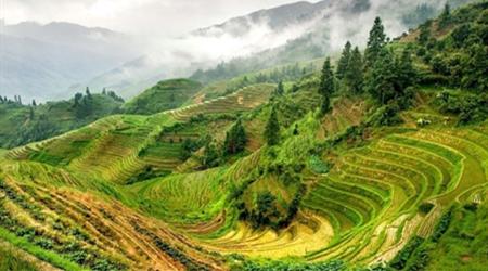 农业利润来自哪里?