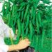 钱串子—辣椒种子