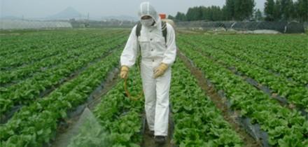 深入推进实施农药使用量零增长行动