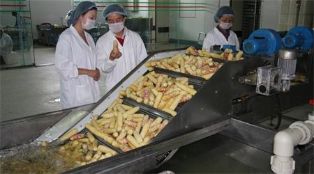 中国国务院:到2020年农产品加工转化率达到68%