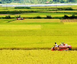 陕西洋县多举措提升农机安全生产水平