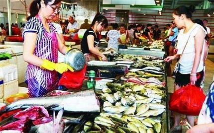 休渔首日 海南海口鱼类价格未受影响