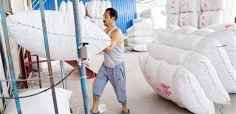 新疆库尔勒市香梨采摘将近 外包装加紧生产