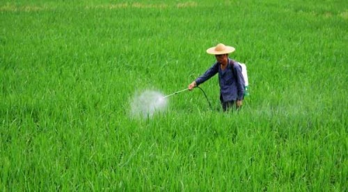 生物农药备受无公害农业推崇