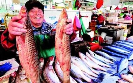 山东青岛各种海鲜开始集中上市
