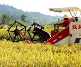 河北:全程机械化让农业生产更精准