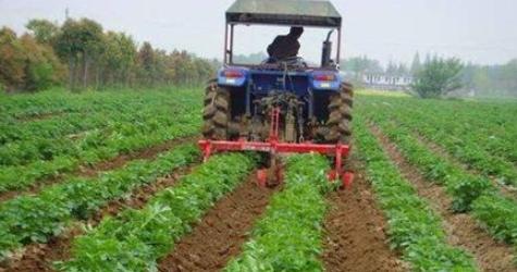 蔬菜生产机械化