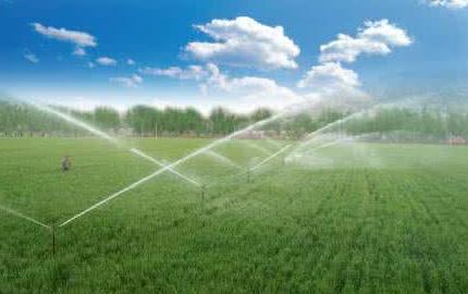 北京:2017年海淀区将实现高效节水灌溉8000亩
