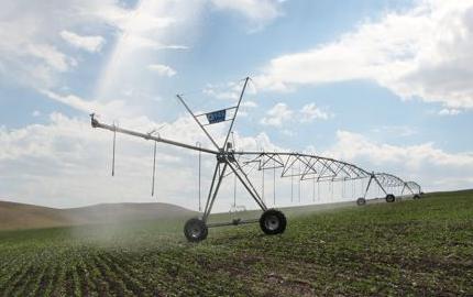 呼伦贝尔:节水灌溉下的一抹绿色
