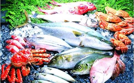 驻马店:水产市场海鲜让市民大饱口福