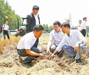 驻马店:专家大田来观摩农技农机巧合作